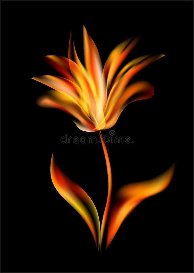 La fleur de la tulipe a révélé s'ouvrir rose de fleurs de flammes illustration de vecteur