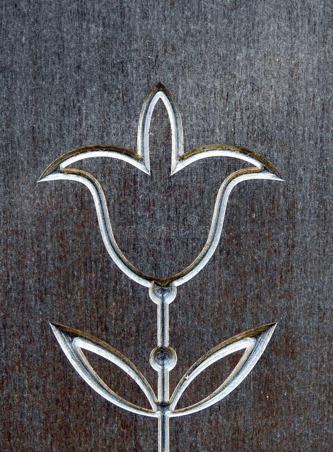 La fleur de tulipe a découpé sur la surface en bois, Lithuanie photographie stock