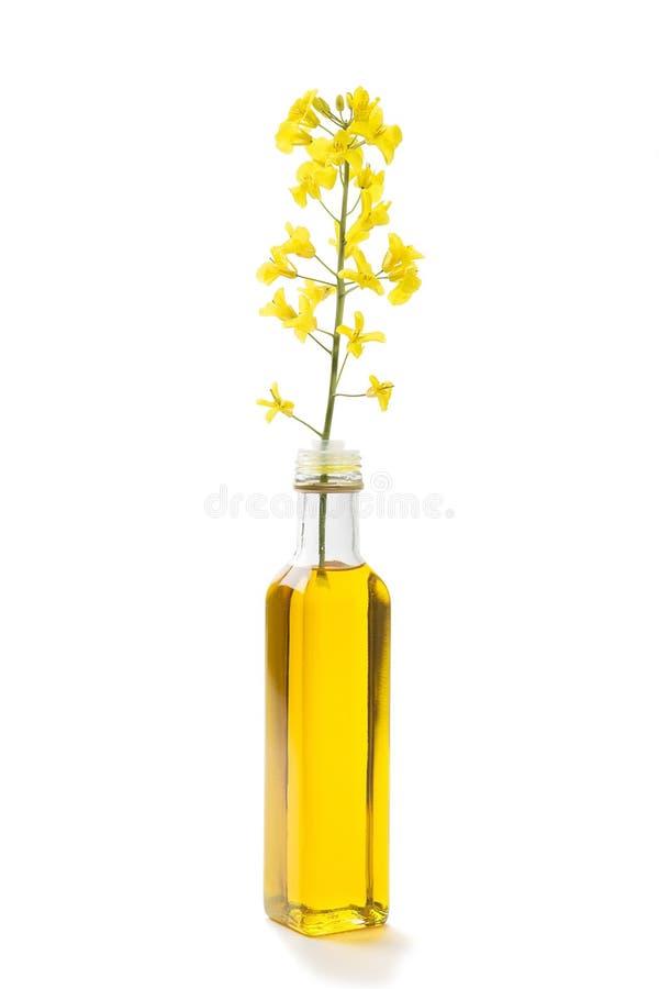 La fleur et le canola de graine de colza huile dans une bouteille photos stock