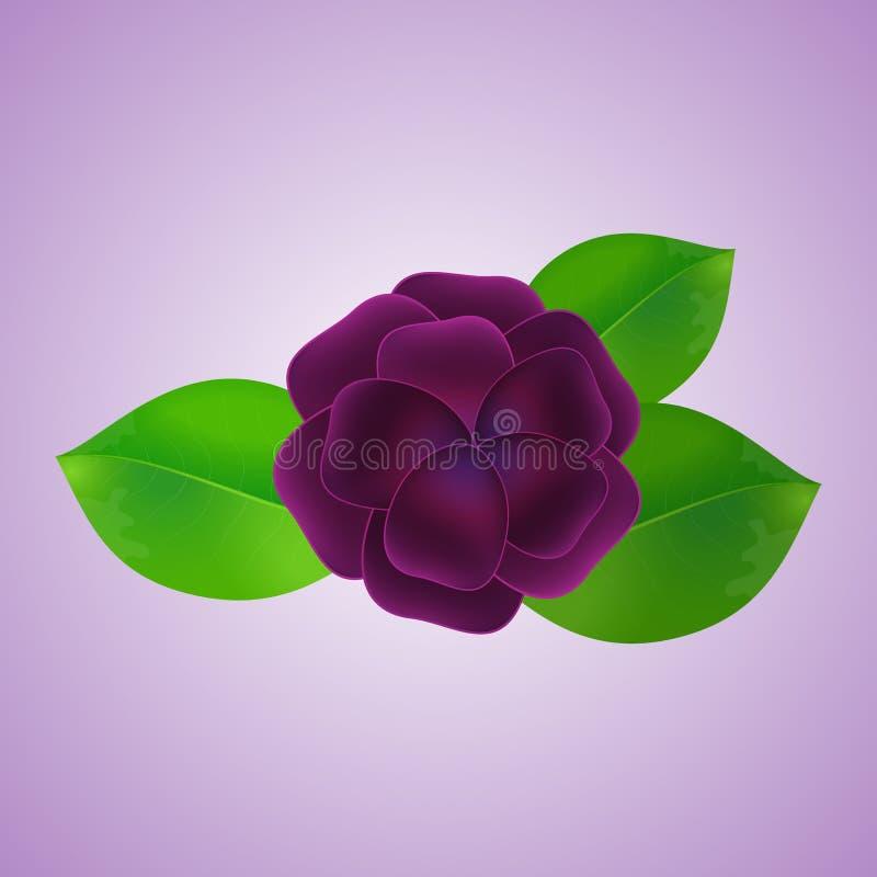 La fleur et les feuilles, fond image libre de droits