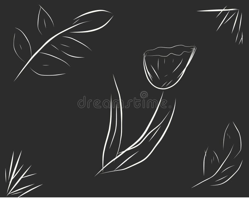 La fleur et les feuilles sur un fond noir image libre de droits