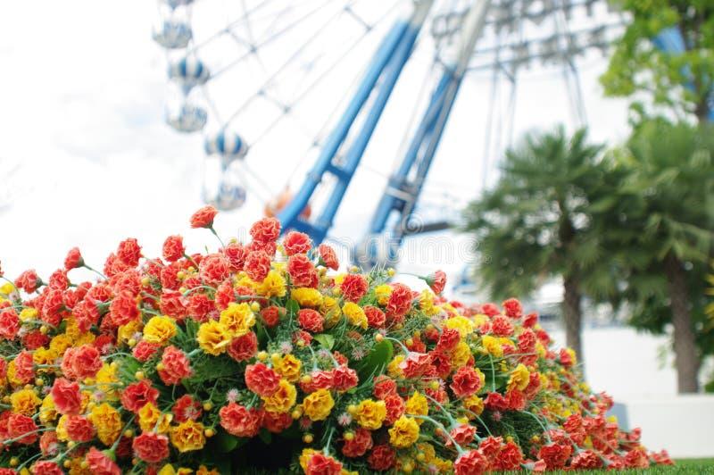 La fleur minuscule devant la roue de ferris photos libres de droits