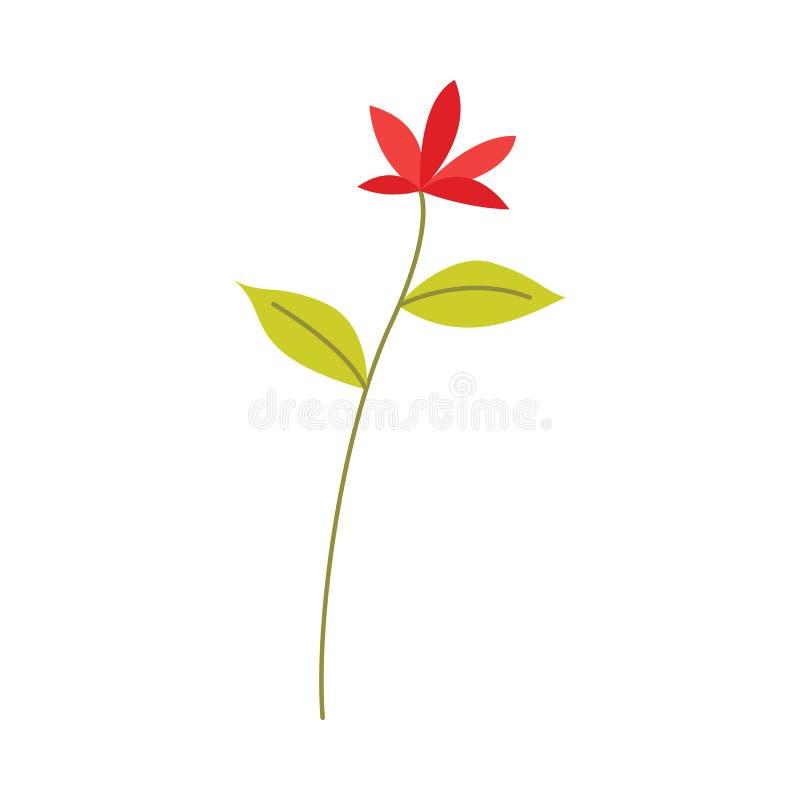La fleur rouge sur la tige avec le vert part - de l'objet décoratif floral naturel pour la conception dans le style plat illustration de vecteur