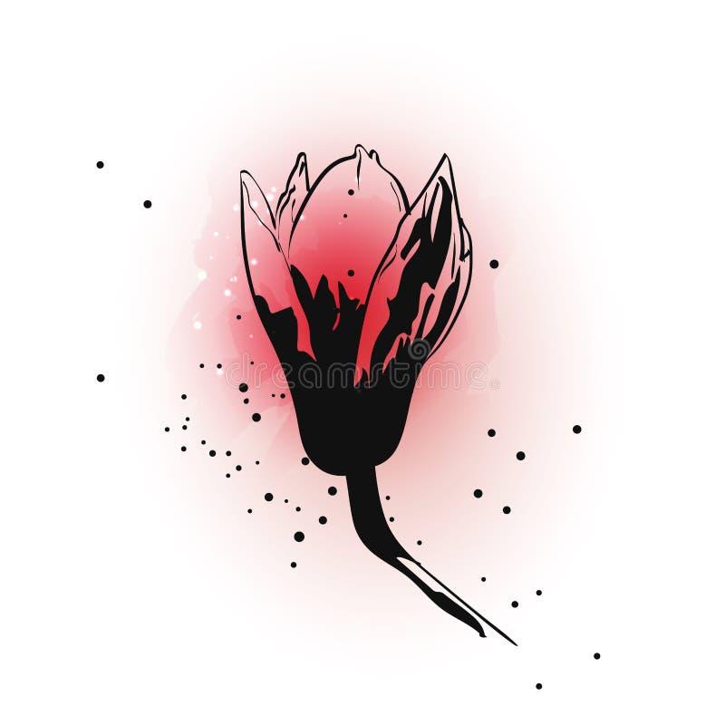 La flor exhausta de la magnolia de la tinta de la mano en acuarela rosada salpica en el fondo blanco ilustración del vector