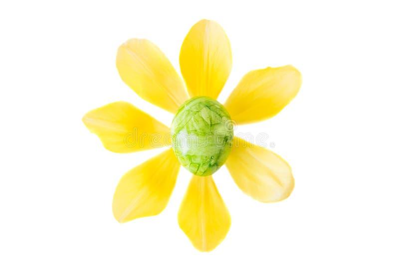La flor hecha de un huevo de Pascua verde y el tulipán amarillo florecen foto de archivo