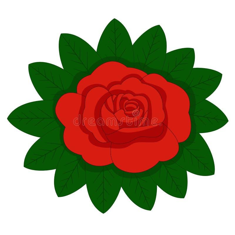 La flor subió, los brotes rojos y las hojas verdes Aislado en el fondo blanco Ilustración del vector ilustración del vector