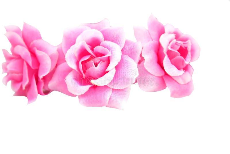 La flor subió rosado en el fondo blanco, falso imagenes de archivo