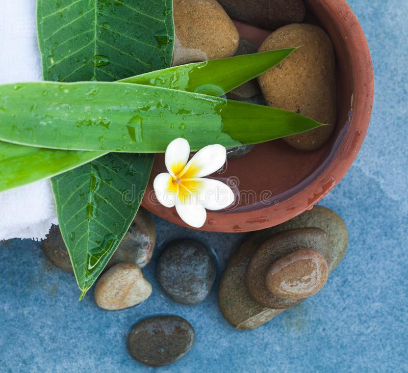 La flor y las piedras tropicales del balneario para relajan tiempo en fondo azul imagen de archivo