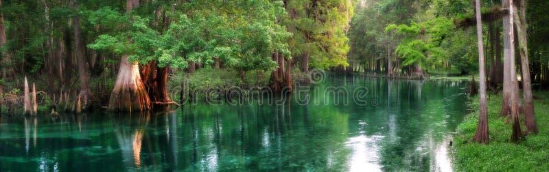 La Florida primavera-alimentó panorama del río imagen de archivo