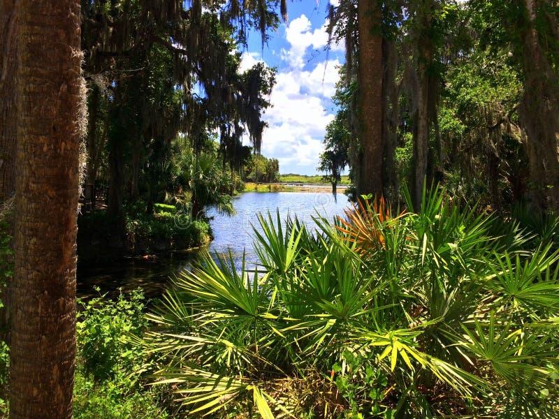 La Floride naturelle image stock