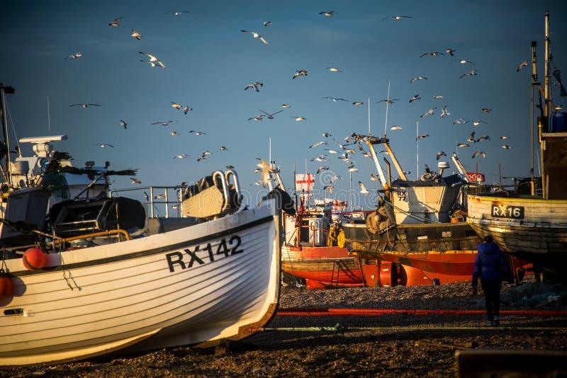 La flotte de pêche de Hastings photographie stock libre de droits