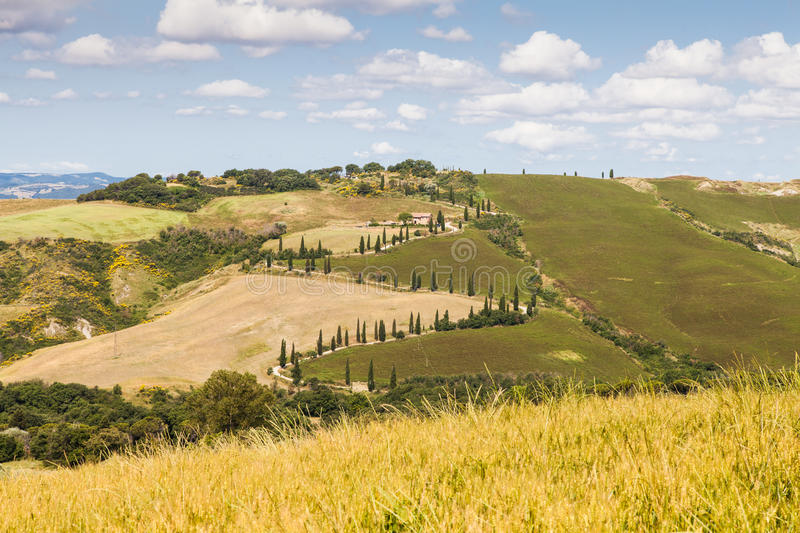 Download La Foce stock image. Image of hill, green, foce, orcia - 33790025