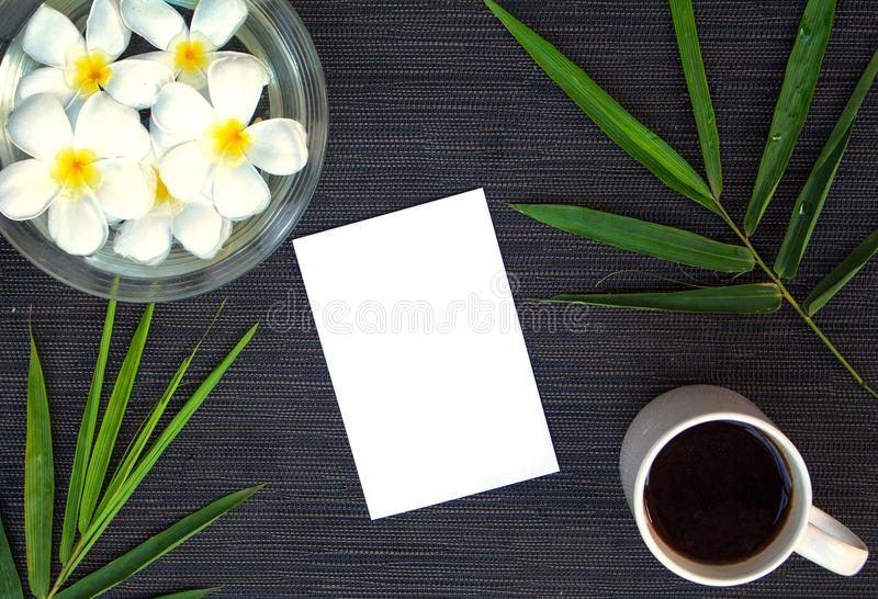 La foglia ed il frangipane di bambù fioriscono su fondo di legno rustico Carta in bianco e vista superiore della decorazione flor fotografie stock libere da diritti