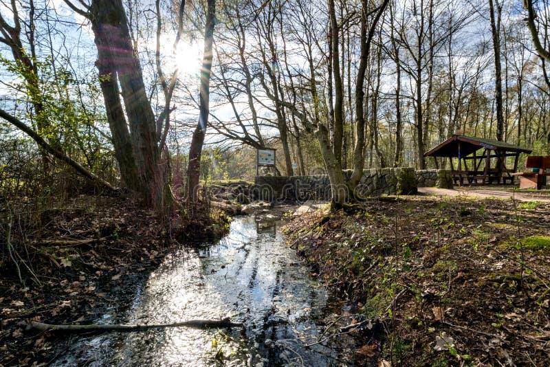 La fonte di Alster in Henstedt-Ulzburg immagini stock