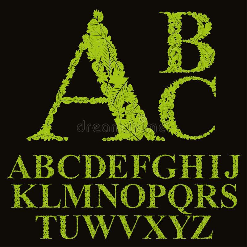 La fonte floreale fatta con le foglie, lettere naturali dell'alfabeto ha messo, vect royalty illustrazione gratis