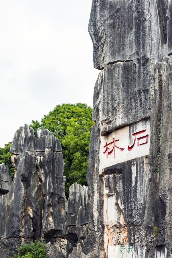 La forêt en pierre photographie stock