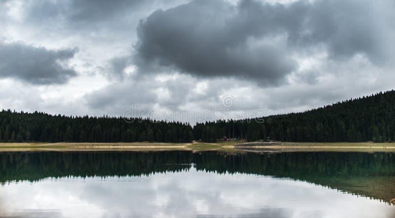 La forêt s'est reflétée dans l'eau du lac noir image libre de droits