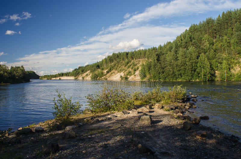 Download La forêt sur le lac photo stock. Image du scénique, vert - 77150562
