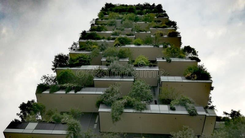La forêt verticale images stock