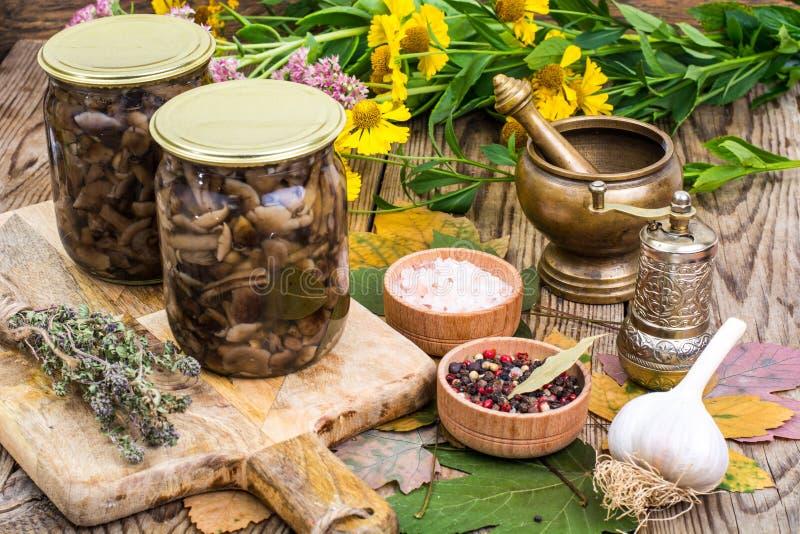 La foresta autunnale marinata si espande rapidamente in barattolo di vetro, il sale, spezie sulla tavola di legno fotografia stock