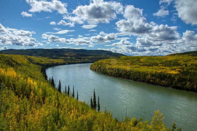 La foresta brillante di autunno colora la linea il fiume potente di Liard immagine stock