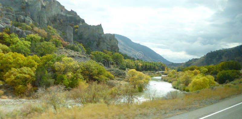 La foresta nazionale di Dixie in autunno fotografia stock