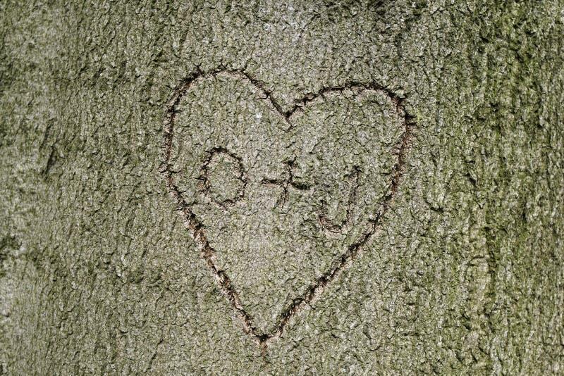 La forma del corazón con iniciales talló en árbol imagen de archivo