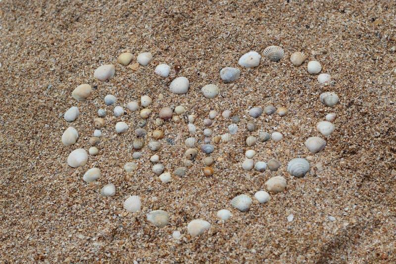 La forma del corazón hizo de cáscaras del mar en la arena foto de archivo libre de regalías