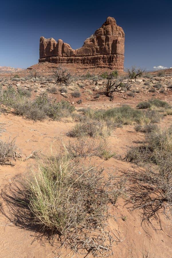 La formación de roca y el cepillo del desierto, arquea el parque nacional Moab Utah fotografía de archivo libre de regalías