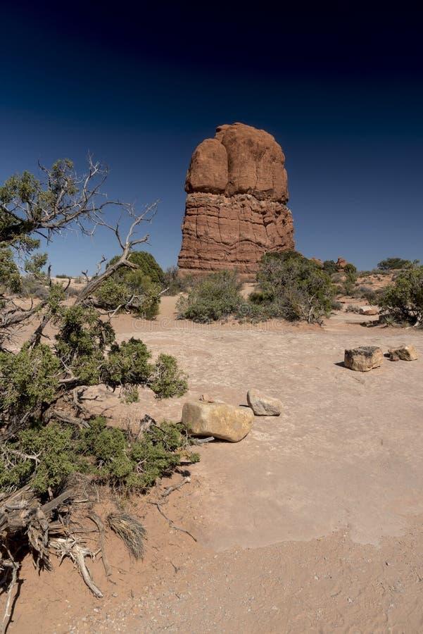 La formación de roca y el cepillo del desierto, arquea el parque nacional Moab Utah fotos de archivo