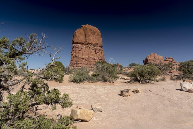 La formación de roca y el cepillo del desierto, arquea el parque nacional Moab Utah foto de archivo libre de regalías