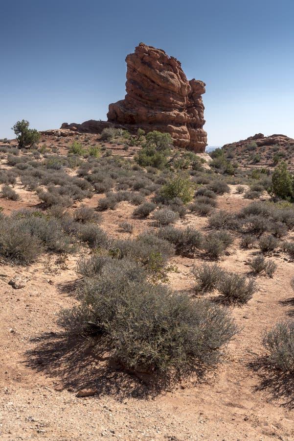 La formación de roca y el cepillo del desierto, arquea el parque nacional Moab Utah imagen de archivo