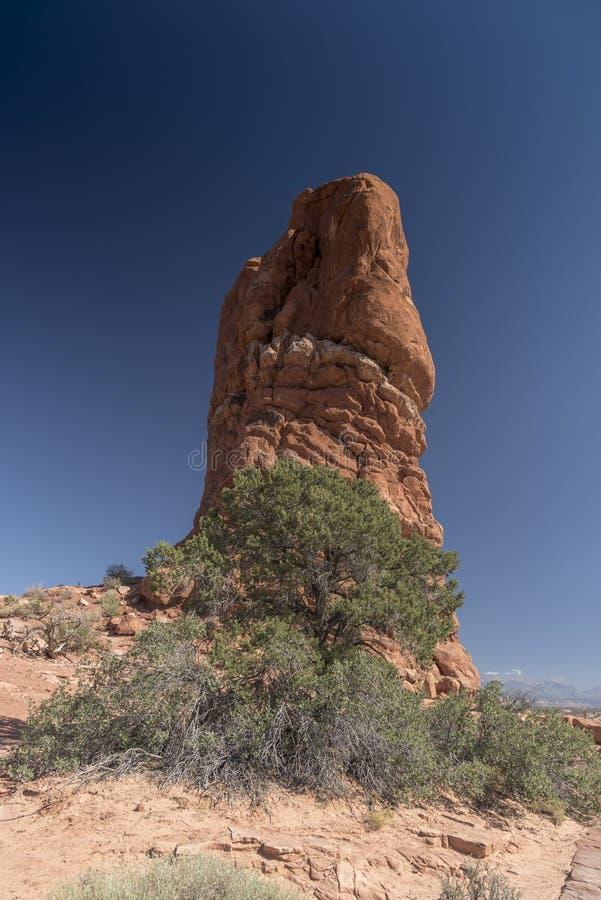 La formación de roca y el cepillo del desierto, arquea el parque nacional Moab Utah fotografía de archivo