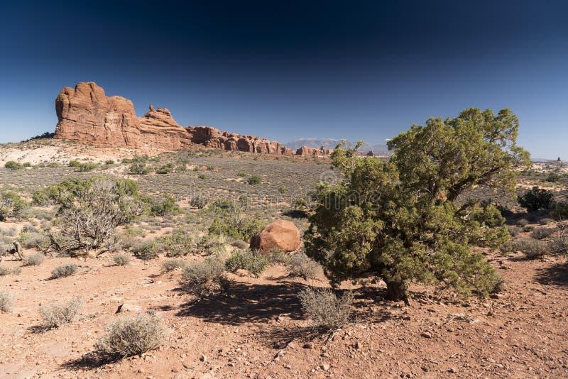 La formación de roca y el cepillo del desierto, arquea el parque nacional Moab Utah imágenes de archivo libres de regalías