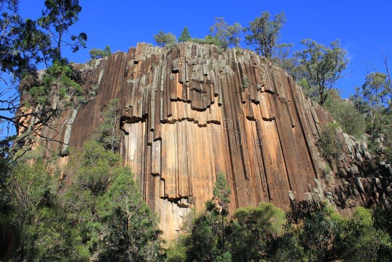 La formazione stridente dell'organo antico della roccia vulcanica conosciuta come le rocce segate, NSW, Australia immagine stock