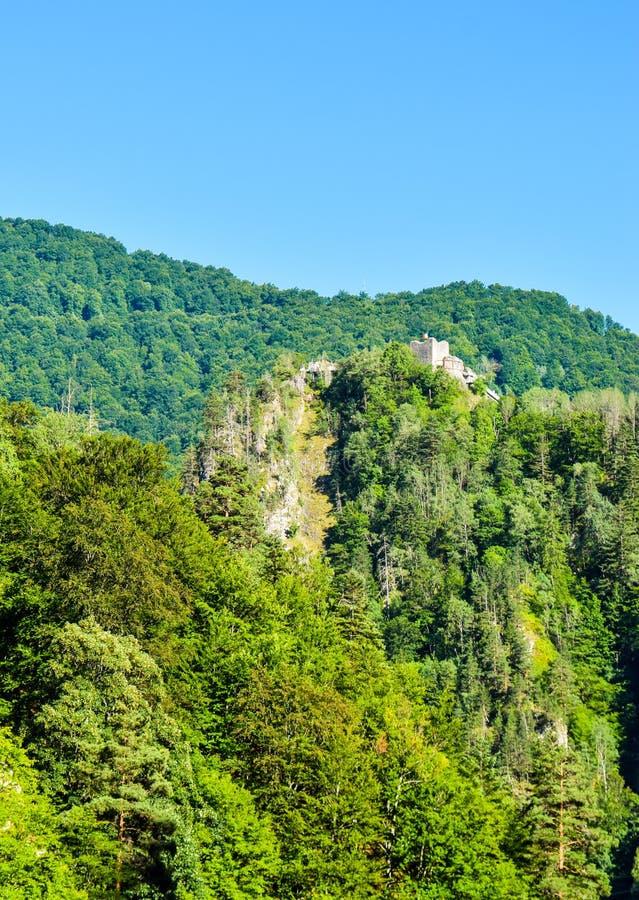 La forteresse de Poenari photographie stock libre de droits