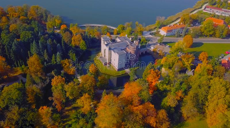 La foto aérea del abejón - vista de arriba de un bosque verde enorme es un lugar hermoso en Europa Central 2019 fotografía de archivo libre de regalías