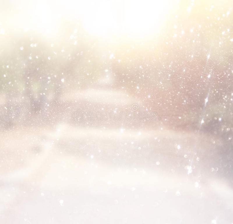 La foto abstracta borrosa de la luz estalló entre árboles fotos de archivo