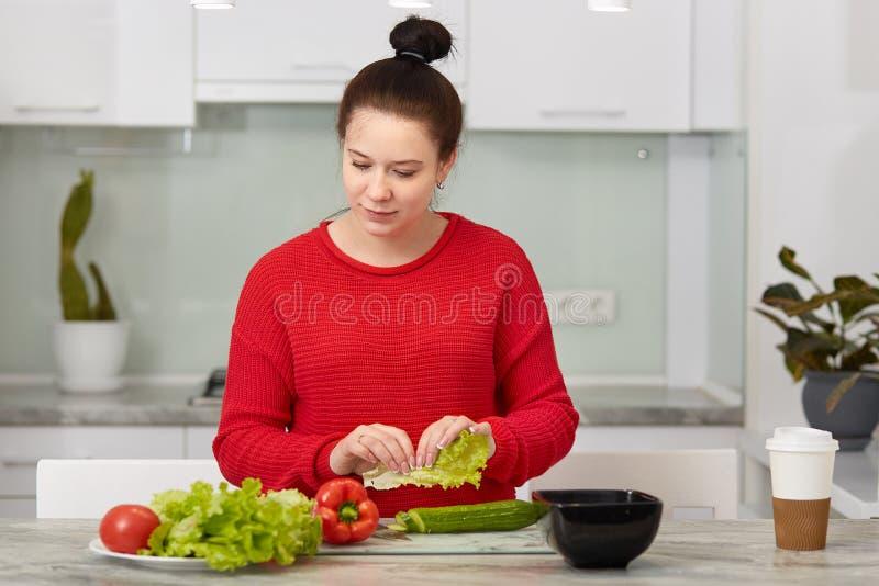 La foto de la madre futura atractiva, sostiene lechuga, prepara la ensalada vegetal para el desayuno, vestida en ropa roja casual fotos de archivo