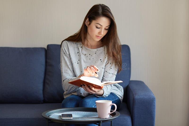La foto de la mujer joven concentrada atractiva en puente, enfocada en libro, se sienta en el sofá cómodo, bebe el café o el té,  fotografía de archivo