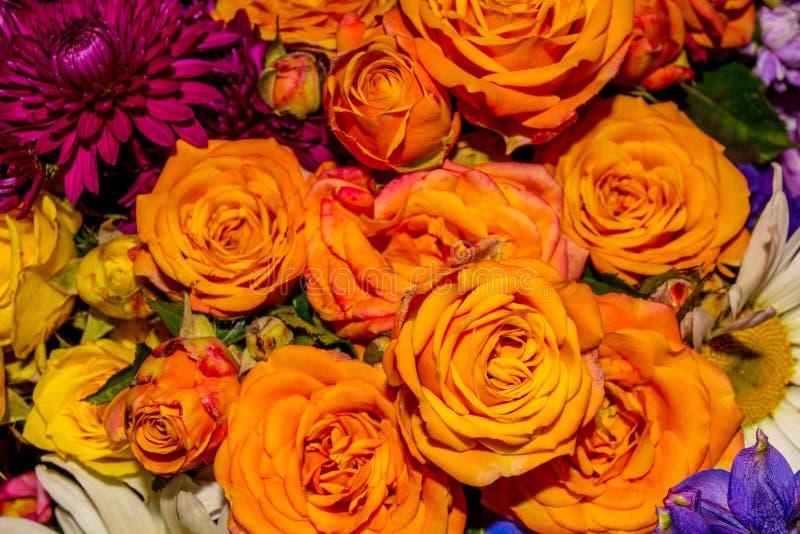 La foto del fondo de la flor del extracto del primer consiste en muchas flores fotos de archivo libres de regalías