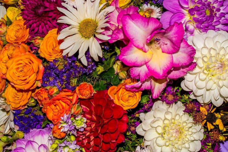 La foto del fondo de la flor del extracto del primer consiste en muchas flores imagen de archivo libre de regalías