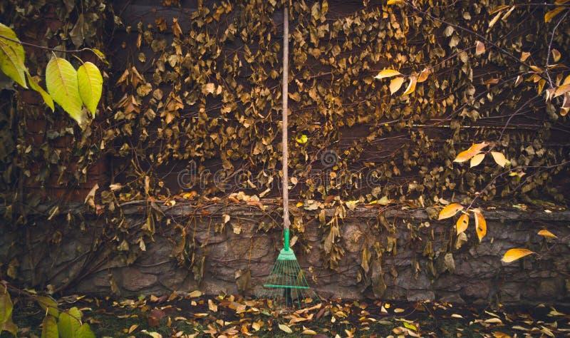 La foto entonada de los rastrillos de jardín se inclinó a la cerca de madera overgrown fotografía de archivo libre de regalías