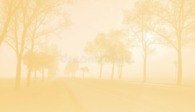 La foto entonada del camino de la niebla fotos de archivo