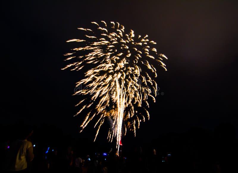 La fotografía de la noche de los fuegos artificiales para la celebración 2018 del Año Nuevo sobre gente en Parramatta parquea, Sy fotos de archivo libres de regalías