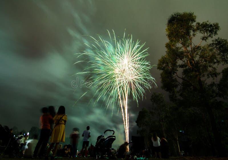 La fotografía de la noche de los fuegos artificiales para la celebración 2018 del Año Nuevo sobre gente en Parramatta parquea, Sy imagen de archivo
