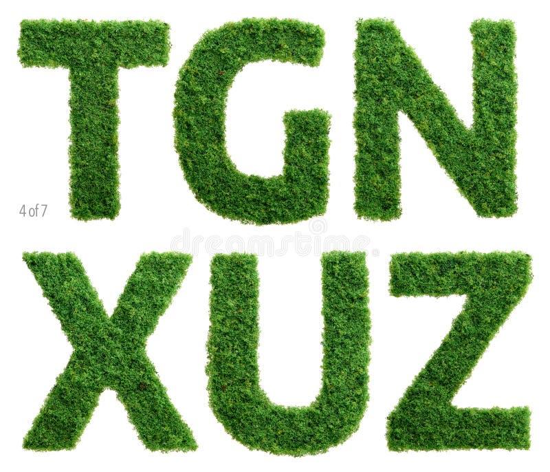 La fotografía del alfabeto de la hierba fijó 4 de 7 stock de ilustración