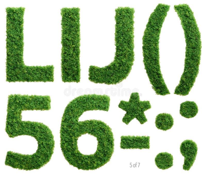 La fotografía del alfabeto de la hierba fijó 5 de 7 stock de ilustración