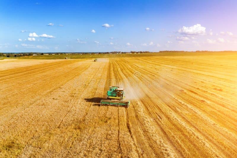 La fotografia aerea, mietitrebbiatrice sta lavorando ad un giacimento di grano immagini stock libere da diritti