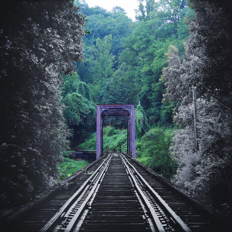 La fotografia artistica della natura di un treno d'annata segue il ponte che si sbiadisce a colori nella foresta immagini stock libere da diritti